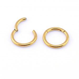 Image result for gold segment nipple rings